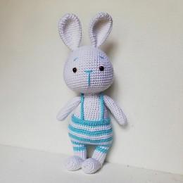 Blue Bunny Boy