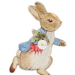 Peter Rabbit Plates Set of 12