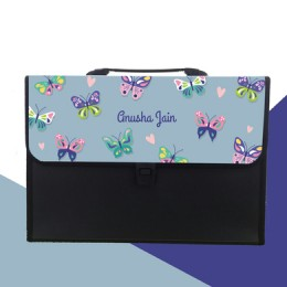 Butterfly Theme Folder
