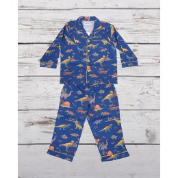 Multi Dinosaur Nightsuit