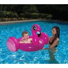 Flamingo Baby Rider