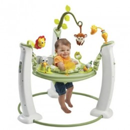 Evenflo Exersaucer jump and learn Stationary Jumper