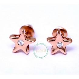 Star Rose Gold Earrings