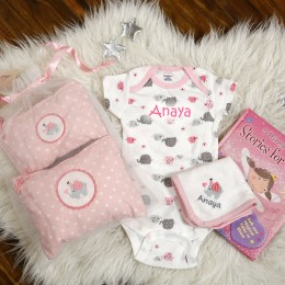 Welcome Baby 4 pc gift set