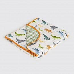 Dinosaurs Organic Reversible Blanket