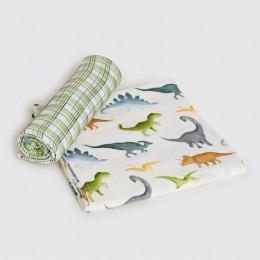 Dinosaurs Organic Swaddle Set