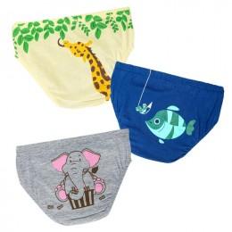 Lunchtime - Boy Underwear