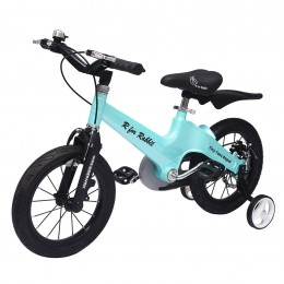 Tiny Toes Rapid Plug and Play Kids Bicycle 14 inch/T for 3 to 5 years