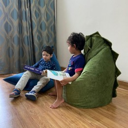 Dino BeanBag + BookShelf Combo