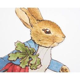 Peter Rabbit & Friends Egg Hunt Kit