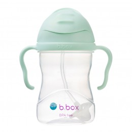 Weighted Straw Sippy Cup 240ml - Pistachio Light Green