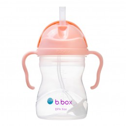 Weighted Straw Sippy Cup 240ml - Tutti Frutti