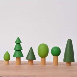 Birch Evergreen Trees