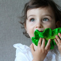 Kendall The Kale Natural Rubber Teether