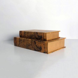 Secret Storage - Book Shelf