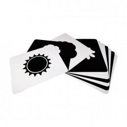 Newborn Cards - Nature