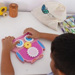 Owl Gear Toy