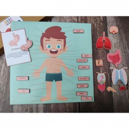 Body Parts  - Interactive Game