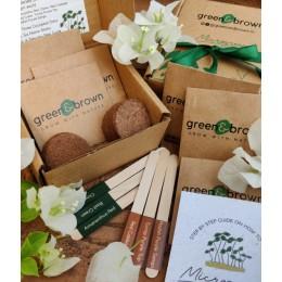 DIY Microgreen Seeds Kit