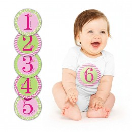 Baby Milestone Stickers Pink - 12 Stickers